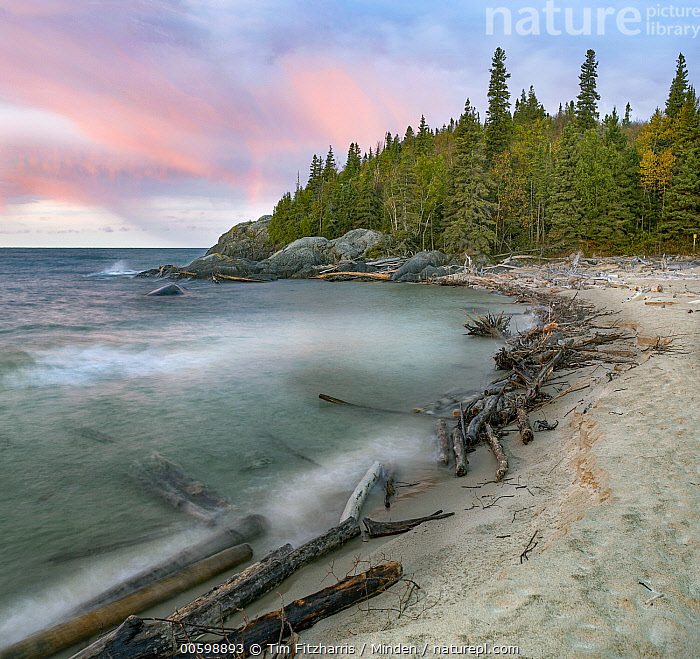 Horseshoe Bay, Pukaskwa National Park, Ontario, Canada  ,  Beach, Canada, Coast, Color Image, Day, Horizon, Horizontal, Horseshoe Bay, Landscape, Log, Long Exposure, Nobody, Ontario, Outdoors, Photography, Pukaskwa National Park, Square, Time Exposure  ,  Tim Fitzharris