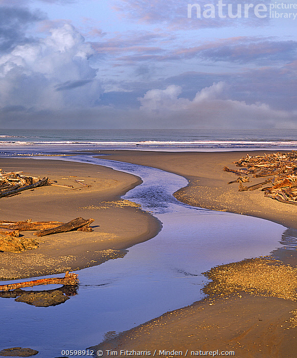 Kalaloch Beach, Olympic National Park, Washington  ,  Beach, Blue Sky, Cloudy, Coast, Color Image, Creek, Day, Horizon, Kalaloch Beach, Landscape, Nobody, Olympic National Park, Outdoors, Photography, River, Vertical, Washington  ,  Tim Fitzharris