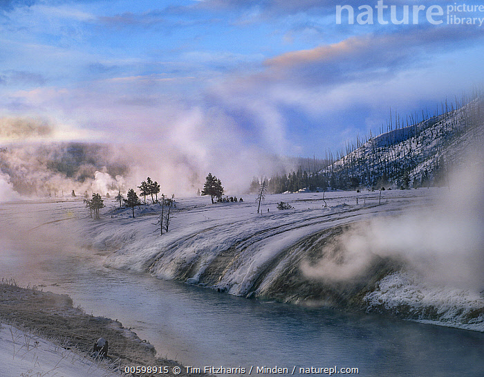 Geysers along river in winter, Yellowstone National Park, Wyoming  ,  Blue Sky, Color Image, Day, Geothermal, Geyser, Horizontal, Landscape, Nobody, Outdoors, Photography, River, Snow, Steam, Winter, Wyoming, Yellowstone National Park  ,  Tim Fitzharris