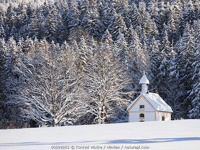 Chapel in winter, Upper Bavaria, Germany  ,  Building, Chapel, Church, Color Image, Day, Germany, Horizontal, Landscape, Nobody, Outdoors, Photography, Snow, Solitude, Tranquility, Upper Bavaria, Winter  ,  Konrad Wothe