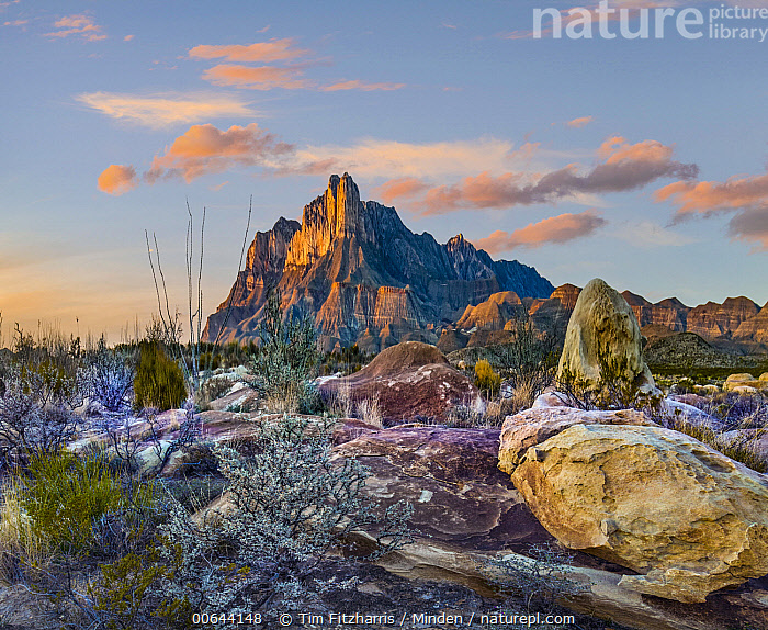 El Capitan, Guadalupe National Park, Texas  ,  Blue Sky, Color Image, Day, El Capitan, Guadalupe National Park, Horizontal, Landscape, Mountain, Nobody, Outdoors, Peak, Photography, Texas  ,  Tim Fitzharris