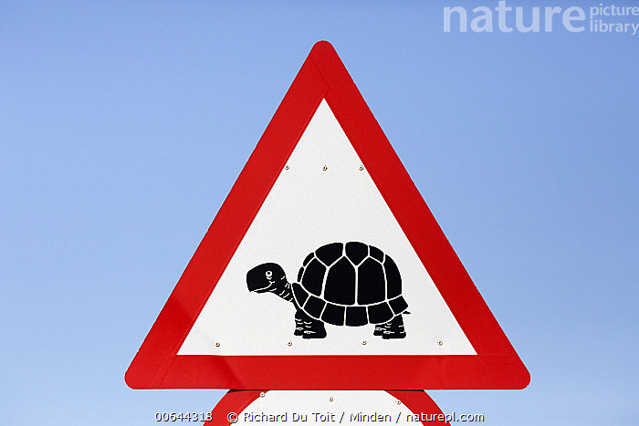 Road warning sign for tortoises, South Africa  ,  Adult, Color Image, Day, Front View, Full Length, Horizontal, Nobody, One Object, Outdoors, Photography, Road, Road Sign, South Africa, Tortoise, Warning Sign, Wildlife  ,  Richard Du Toit