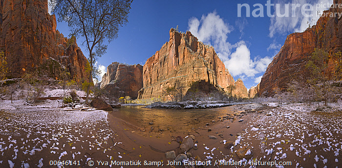 Sandstone cliffs, and snow on the Virgin River, 360 view, Zion Canyon, Zion National Park, Utah  ,  360 View,Canyon,Color Image,Day,Erosion,Horizontal,Landscape,Nobody,Outdoors,Panoramic,Photography,Sandstone,Snow,Utah,Virgin River,Zion Canyon,Zion National Park,360 View,Canyon,Color Image,Day,Erosion,Horizontal,Landscape,Nobody,Outdoors,Panoramic,Photography,Sandstone,Snow,Utah,Virgin River,Zion Canyon,Zion National Park  ,  Yva Momatiuk & John Eastcott