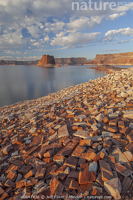 Padres Butte, Lake Powell, Glen Canyon National Recreation Area, Utah  ,  Color Image,Day,Glen Canyon National Recreation Area,Lake Powell,Lakeshore,Landscape,Nobody,Outdoors,Padres Butte,Photography,Utah,Vertical  ,  Jeff Foott