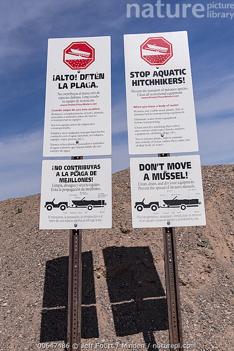 Invasive species warning sign at reservoir, Lake Mead National Recreation Area, Nevada  ,  Color Image,Day,Invasive Species,Lake Mead National Recreation Area,Nevada,Nobody,Outdoors,Photography,Reservoir,Sign,Vertical,Warning Sign  ,  Jeff Foott