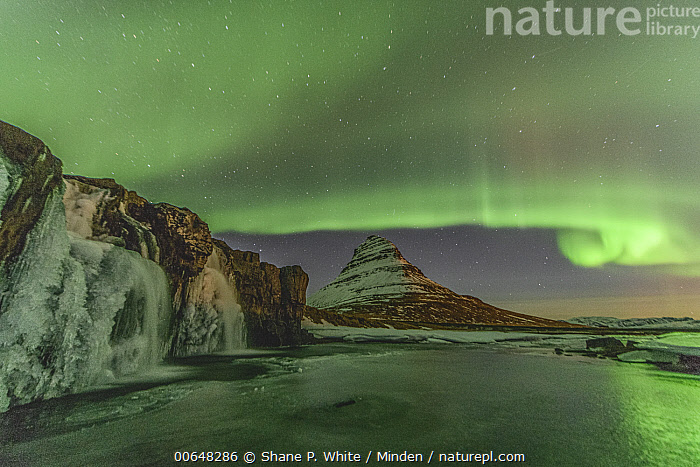 Northern lights over frozen waterfall and mountain, Grundarfjordur, Iceland  ,  Cliff,Color Image,Frozen,Grundarfjordur,Horizontal,Iceland,Inspirational,Landscape,Mountain,Night,Nobody,Northern Lights,Outdoors,Peak,Photography,Sky,Snow,Star,Tranquility,Waterfall,Winter  ,  Shane P. White