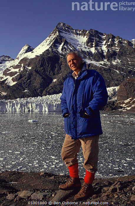 David Attenborough on location in South Georgia, for BBC televison series Life in the Freezer 1992, FILMING,NHU,PEOPLE,sub antarctica,VERTICAL, Ben Osborne