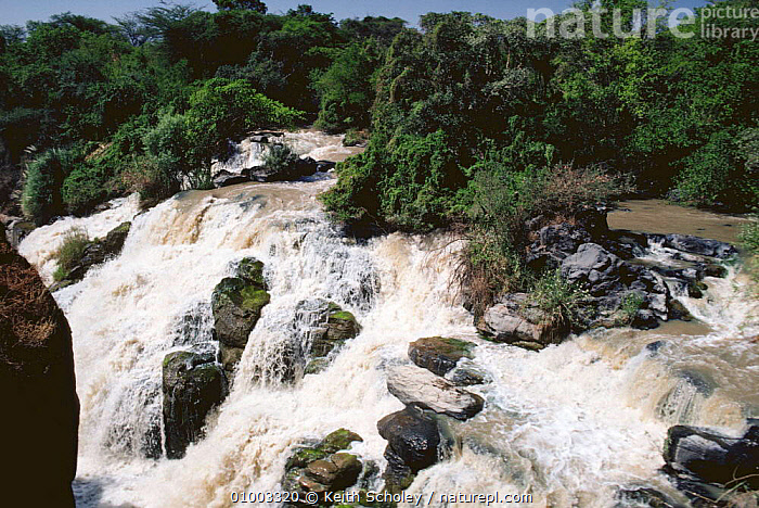 Awash falls in full flow, Awash river, Ethiopia, East Africa  ,  AFRICA,EAST AFRICA,FRESHWATER,RIVERS,WATERFALLS,EAST-AFRICA  ,  Keith Scholey