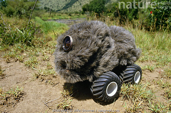 """Remote """"lion buggy"""" used to film Lion pride close-ups for BBC television series """"Supersense"""", 1989, CAMERA,DISGUISE,EQUIPMENT,FILMING,FILMING IN WILD,NHU,REMOTE FILMING ,Camouflage, John Downer"""