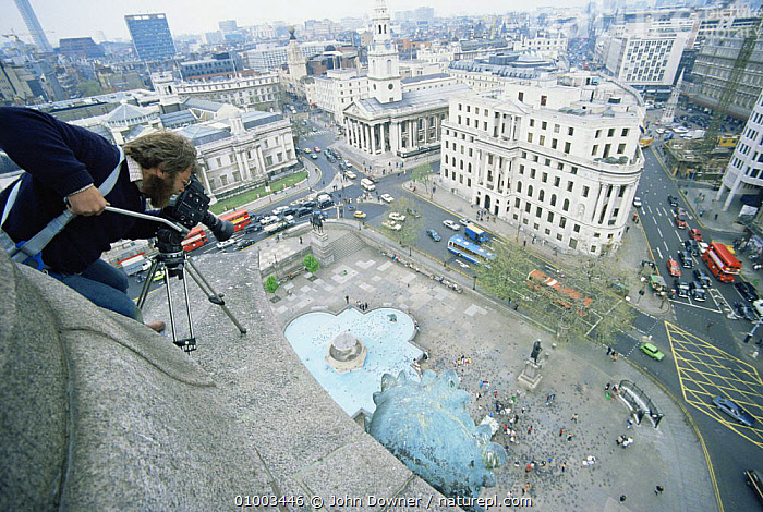"""Cameraman Owen Newman filming from top of Nelson's Column in Traflagar Square, London for tv series """"Living Isles"""", 1986  ,  CITIES,ENGLAND,FILMING,NHU,Europe  ,  John Downer"""