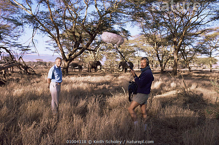 David Attenborough with sound recordist on location in Kenya, standing near elephant herd, about to do a piece to camera, AFRICA,EAST AFRICA,FILMING,NHU,PRESENTER, Keith Scholey