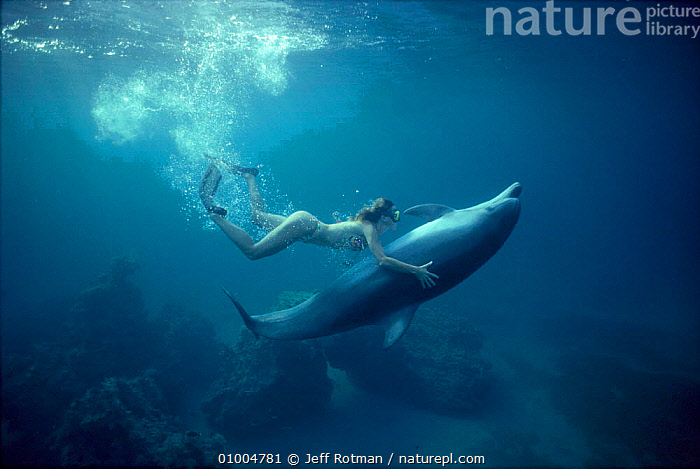 Woman diving with Bottlenose dolphin (Tursiops truncatus) Red Sea Model released.  ,  BOTTLE NOSE,CETACEANS,COMMUNICATION,DIVER,DOLPHIN,JR,MAMMALS,MARINE,PEOPLE,PERSON,RED SEA,UNDERWATER,WOMAN,DOLPHINS, Mammals  ,  Jeff Rotman
