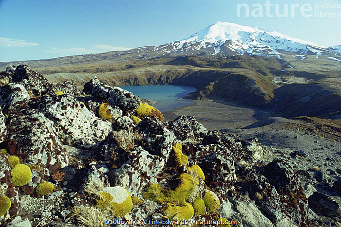 Mt Ruapehu, Tongariro National Park, alpine landscape, New Zealand  ,  ALPINE,AUSTRALASIA,LANDSCAPES,MOUNTAINS,NEW ZEALAND,NP,SNOW,National Park  ,  Tim Edwards