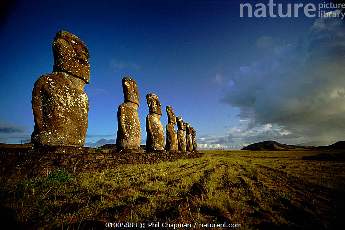 Giant Moai statues. A Kivi, southern part of Easter Island  ,  ANCIENT,ARTIFACTS,CULTURES,GIANT,HORIZONTAL,KIVI,MOAI,,STATUES ,OCEANIA  ,  Phil Chapman