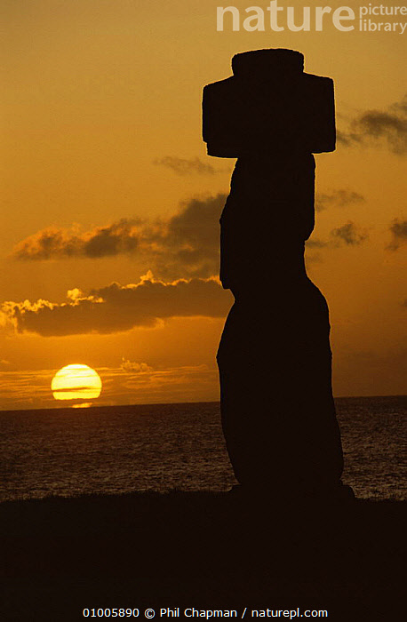 Moai with stone topknot on the clifftop at Hangaroa, Easter Island, with setting sun  ,  BUILDINGS,OCEANIA,PACIFIC ISLANDS,SILHOUETTES,SUNSET  ,  Phil Chapman