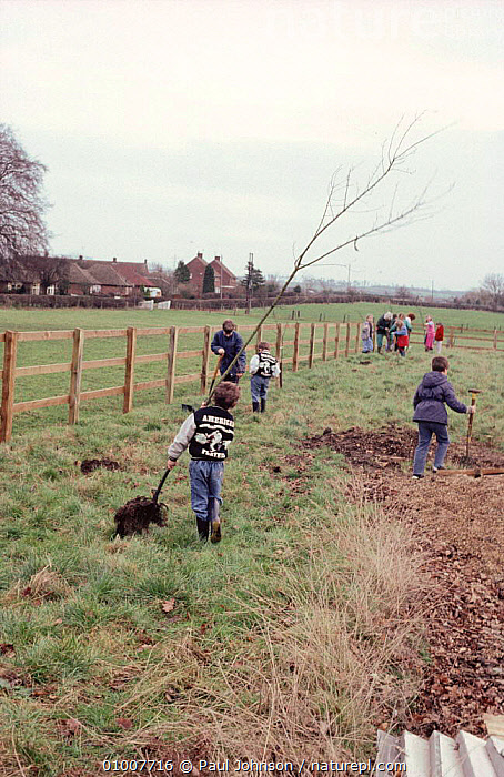 Children on parish tree planting day, Bedfordshire, UK, AFFORESTATION,CHILDREN,CONSERVATION,EDUCATION,ENGLAND,ENVIRONMENTAL,GROUPS,OUTDOORS ACTIVITIES,PEOPLE,TREES,VERTICAL,YOUNG,Europe,Plants, Paul Johnson