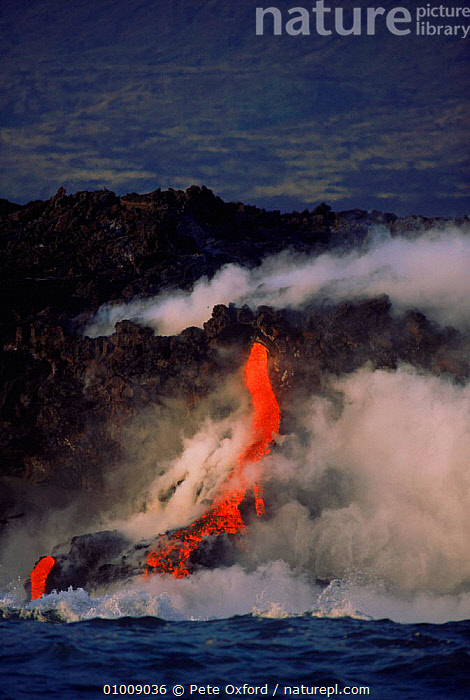 Lava flowing into sea, March 1995. Fernandina Island, Galapagos, FLOWING,VERTICAL,LAVA,SEA,1995,STEAM,MARCH,ISLAND,FERNANDINA,VOLCANOES,GEOTHERMAL,DRAMATIC,GEOLOGY,SOUTH-AMERICA,CONCEPTS, Pete Oxford