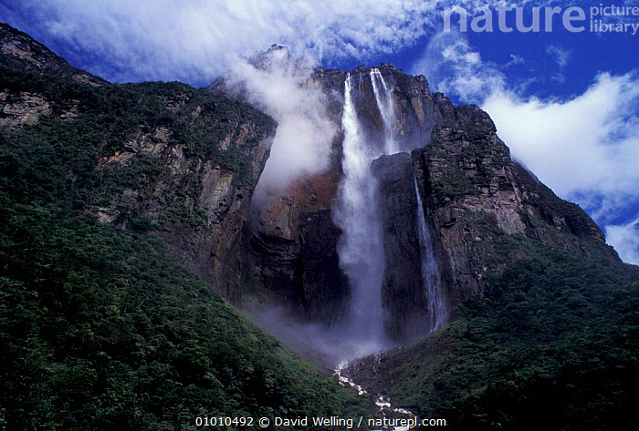 Angel Falls, Canaima National Park, Venezuela, LANDSCAPES,NP,WATERFALLS,NATIONAL PARK,SOUTH-AMERICA, David Welling