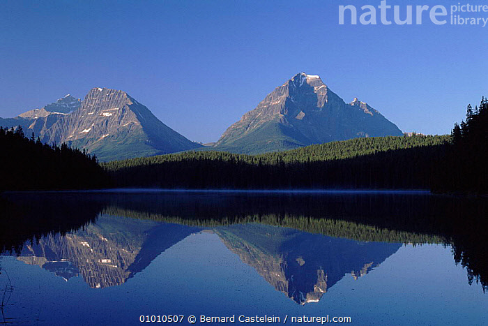 Mount Edith Cavell reflected in lake, Jasper NP, Canada  ,  ALPINE,BC,CAVELL,EDITH,HORIZONTAL,JASPER,LAKES,MOUNTAINS,NATIONAL PARK,NORTH AMERICA,NP,OUTSTANDING,REFLECTIONS,CANADA,,Canadian Rocky Mountain Parks World Heritage Site, UNESCO World Heritage Site,Rocky Mountains,Rockies,NP,Reserve,  ,  Bernard Castelein