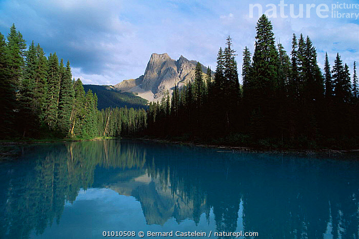Emerald Lake with mountain reflection, Jasper NP, Canada, CANADA,LAKES,LANDSCAPES,MOUNTAINS,NORTH AMERICA,NP,PEACEFUL,WATER,Concepts,National Park,,Canadian Rocky Mountain Parks World Heritage Site, UNESCO World Heritage Site,Rocky Mountains,Rockies,NP,Reserve,, Bernard Castelein