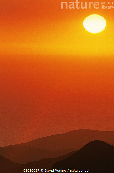 Setting sun over hills, California, USA, RED,SKIES,SUN,SUNSET,USA,VERTICAL,North America, David Welling