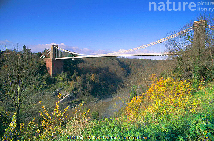 Clifton suspension bridge, Bristol, UK  ,  LANDSCAPES,ENGLAND,BRIDGES,BUILDINGS,Europe  ,  David Noton