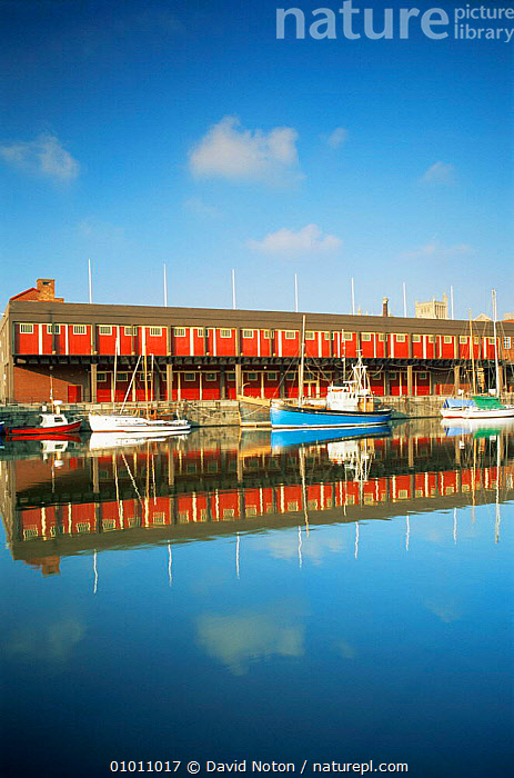 Bristol Docks with Exhibition Centre reflected in water, Bristol, UK, BOATS,BUILDINGS,EUROPE,LANDSCAPES,REFLECTIONS,RIVERS,UK,URBAN,VERTICAL,United Kingdom,British, United Kingdom, United Kingdom, David Noton