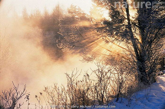 Sunrise on winter misty morning over Winter Creek, Wisconsin, USA  ,  ATMOSPHERIC,DAWN,Fog,MIST,NORTH AMERICA,PEACEFUL,SUN,SUNRISE,WINTER,Concepts,USA  ,  Larry Michael
