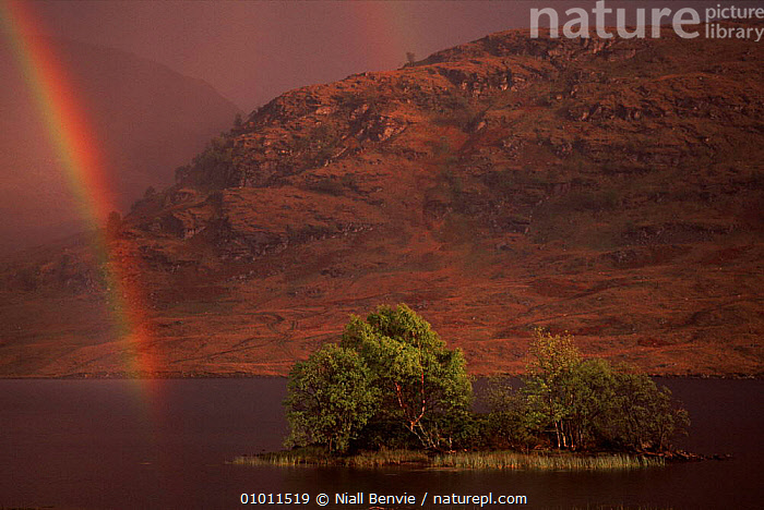 Rainbow over Loch Arklet, Argyll, Scotland.  ,  UK,NB,RAINBOWS,SCENIC,ARKLET,ATMOSPHERIC,LOCH,EUROPE,ISLANDS,MOUNTAINS,RAINBOW,HORIZONTAL,ARGYLL,LANDSCAPES,HIGHLANDS,LAKES,UNITED KINGDOM,WEATHER,BRITISH  ,  Niall Benvie