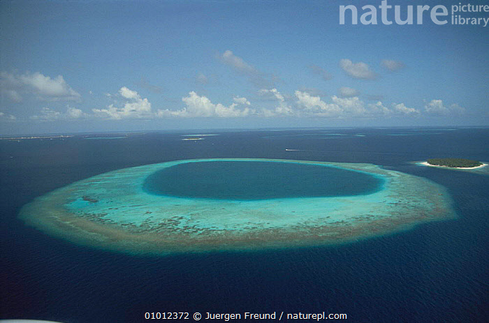 Aerial view of island, the Maldives, Indian Ocean  ,  AERIALS,ASIA,CORAL,CORAL REEF,FRINGING,HOLIDAYS,INDIAN OCEAN,ISLANDS,LANDSCAPES,MARINE,SEA,TROPICAL,Concepts,INDIAN OCEAN ISLANDS  ,  Jurgen Freund