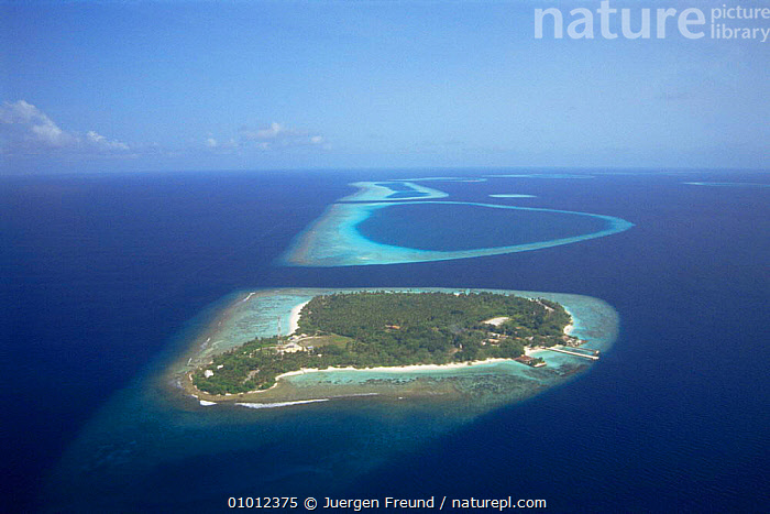 Aerial view of islands, the Maldives, Indian Ocean  ,  AERIALS,ASIA,CORAL,CORAL REEF,FRINGING,HOLIDAYS,INDIAN OCEAN,ISLAND,ISLANDS,LANDSCAPES,MARINE,SEA,TROPICAL,Concepts,INDIAN OCEAN ISLANDS  ,  Jurgen Freund