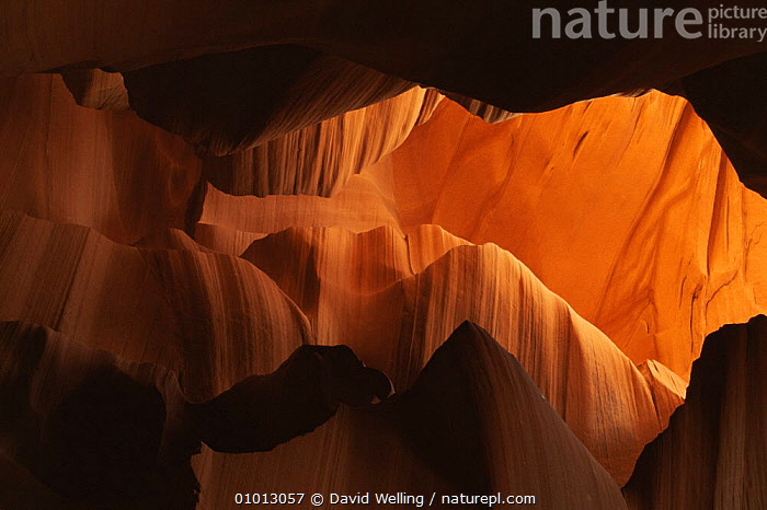Abstract of sandstone formation in Buckskin Canyon, Arizona, USA  ,  ABSTRACT,ARIZONA,ARTY SHOTS,CAVES,COLOURFUL,GEOLOGY,INTERESTING,LANDSCAPES,ORANGE,OUTSTANDING,PATTERNS,RED,ROCK FORMATIONS,USA,North America  ,  David Welling