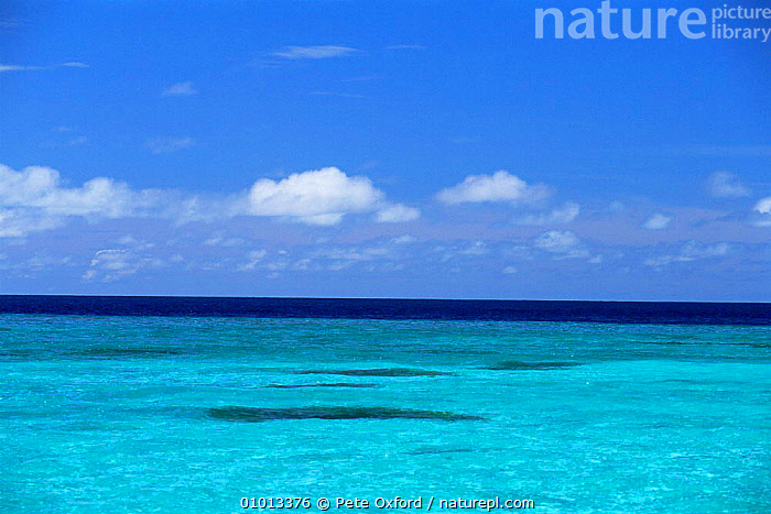 Looking out to deeper water, North Mal� Atoll, Maldives, Indian Ocean Islands  ,  ASIA,BLUE,COASTS,CORAL,CORAL REEFS,FRINGING,HOLIDAYS,INDIAN OCEAN,LANDSCAPES,MARINE,OCEAN,REEF,SEA,SEASCAPES,TROPICAL,Concepts,INDIAN OCEAN ISLANDS  ,  Pete Oxford