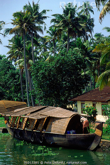Allepey back waters with boat, Kerala, Southern India.  ,  ALLEPEY,ASIA,BACK,BOAT,CONCEPTS,INDIAN SUBCONTINENT,KERALA,PEACEFUL,PEOPLE,PO,SCENE,TRADITIONAL,VERTICAL,WATERS,INDIAN-SUBCONTINENT  ,  Pete Oxford