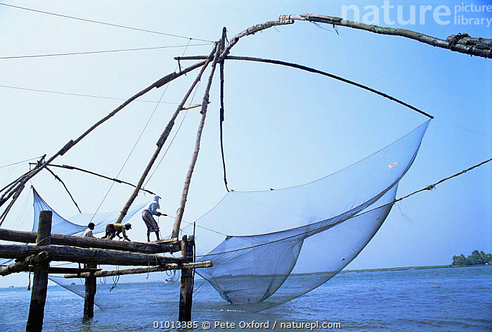 Traditional Chinese cantilever fishing nets used along the coast of Cochin, Kerala, Southern India  ,  ASIA,chinese,coastal waters,COASTS,Fishing,hunting food,INDIAN SUBCONTINENT,MARINE,nets,PEOPLE,sea,TRADITIONAL,traps,INDIAN-SUBCONTINENT,INDIA  ,  Pete Oxford
