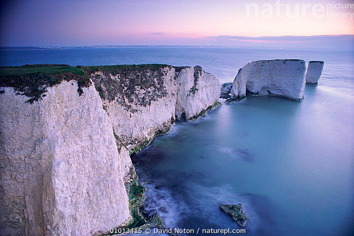 Dawn, Old Harry and his wife. The Foreland, Studland, Dorset. English coastal scene.  ,  FORELAND,COASTAL,HOLIDAYS,ROCK FORMATIONS,STUDLAND,ENGLISH,SEA,SCENE,CLIFFS,HARRY,OUTSTANDING,DAWN,LANDSCAPES,BEACHES,OLD,PEACEFUL,WHITE,WIFE,COASTAL WATERS,DNO,ATMOSPHERIC,CONCEPTS,GEOLOGY,ENGLAND,Europe,,Divine,  ,  David Noton