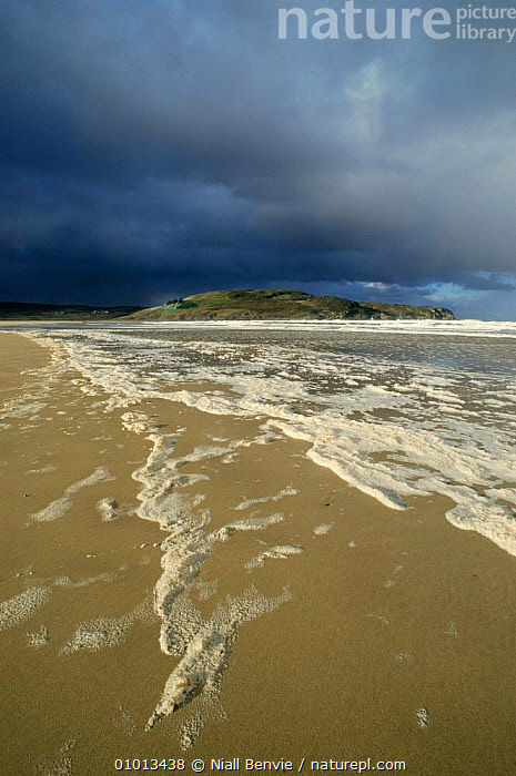 Torrisdale Bay, Invernaver, Betty Hill, Sutherland, Scotland Beach scene.  ,  BEACHES,BLUE,COASTAL WATERS,EUROPE,OUTSTANDING,SCOTLAND,SKY,UK,YELLOW,United Kingdom,British  ,  Niall Benvie
