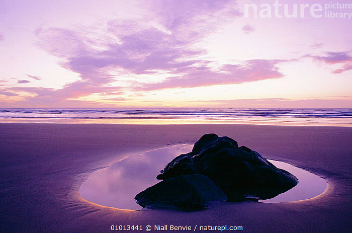 Lump of volcanic rock on a sandy beach, St Cyrus, Scotland.  ,  ATMOSPHERIC,BEACHES,COASTS,CONCEPTS,EUROPE,GEOLOGY,NB,OUTSTANDING,PEACEFUL,REFLECTIONS,ROCK FORMATIONS,Catalogue1  ,  Niall Benvie