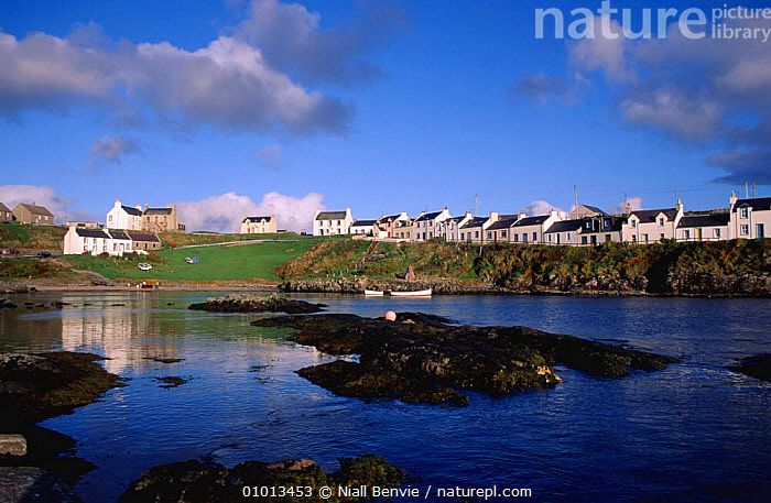 Portnahaven, Scottish harbour used by common seals, Islay, Argyll, Scotland.  ,  BUILDINGS,COASTS,HOLIDAYS,HOUSES,LANDSCAPES,MAMMALS,MARINE,SEA,Concepts,Europe , Inner Hebrides,SCOTLAND,UK,United Kingdom  ,  Niall Benvie
