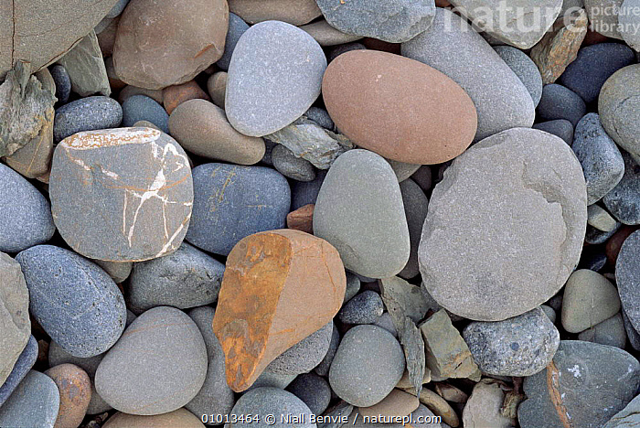 Water smoothed pebbles. St. Ninian's Cave Bay, Scotland.  ,  SCOTLAND,HORIZONTAL,NB,PATTERNS,BACKGROUNDS,COASTS,ARTY SHOTS,VERTICAL,PEBBLES,ROCK,EUROPE  ,  Niall Benvie