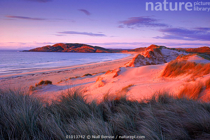Feall Bay, Argyll, at sunset. Scotland.  ,  ARGYLL,ATMOSPHERIC,BAY,BEACHES,BRITISH,COASTS,CONCEPTS,DESERTS,DUNES,EUROPE,FEALL,HOLIDAYS,HORIZONTAL,LANDSCAPES,NB,OUTSTANDING,PEACEFUL,SAND,SAND DUNES,SUNSET,UNITED KINGDOM, United Kingdom  ,  Niall Benvie