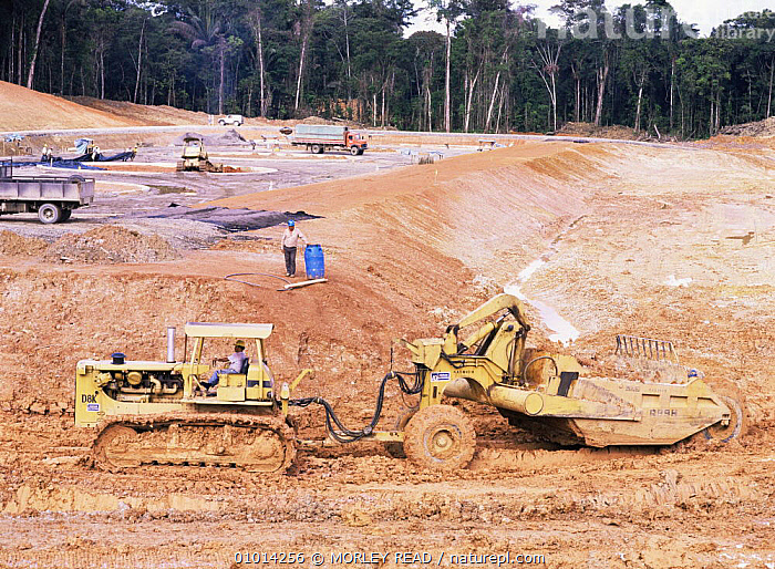 Clearing rainforest for construction of oil facility, Ecuador  ,  AMAZONIA,CRUDE OIL,DEFORESTATION,LANDSCAPES,MACHINERY,PEOPLE,SOUTH AMERICA,TROPICAL RAINFOREST  ,  MORLEY READ