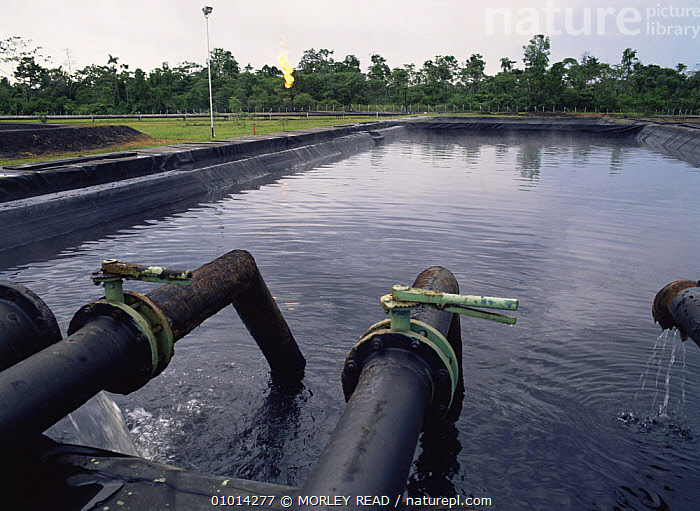Reservoir of waste water at oil production site, Ecuador  ,  CRUDE OIL,DEFORESTATION,INDUSTRY,LANDSCAPES,SOUTH AMERICA,TROPICAL RAINFOREST  ,  MORLEY READ