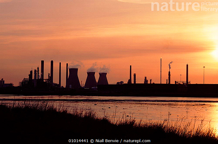 Grangemouth complex, Firth of Forth. Scotland. Pollution from chimney stacks.  ,  BUILDINGS,CHIMNEY,COMPLEX,EUROPE,FIRTH,FORTH,GRANGEMOUTH,HORIZONTAL,INDUSTRIAL,INDUSTRY,NB,POLLUTION,RIVERS,SILHOUETTES,SKY,STACKS,SUNSET,WATER  ,  Niall Benvie