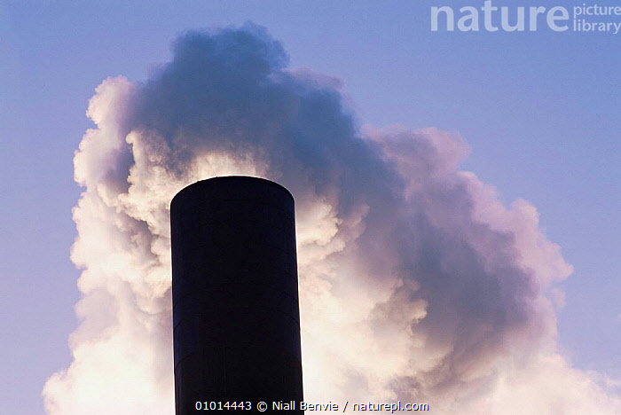 Smoke from incinerator. Dundee, Scotland.  ,  BUILDINGS,EUROPE,OUTSTANDING,POLLUTION,SCOTLAND,UK,URBAN,United Kingdom,British, United Kingdom, United Kingdom  ,  Niall Benvie