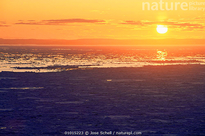 Sunset over ice filled ocean, St Mary's Islands, Newfoundland, Canada  ,  ATLANTIC,DUSK,Evening,ICE,MARINE,NORTH AMERICA,OCEAN,PEACEFUL,sea,SKY,SUNSET,Concepts , LANDSCAPES  ,  Jose Schell