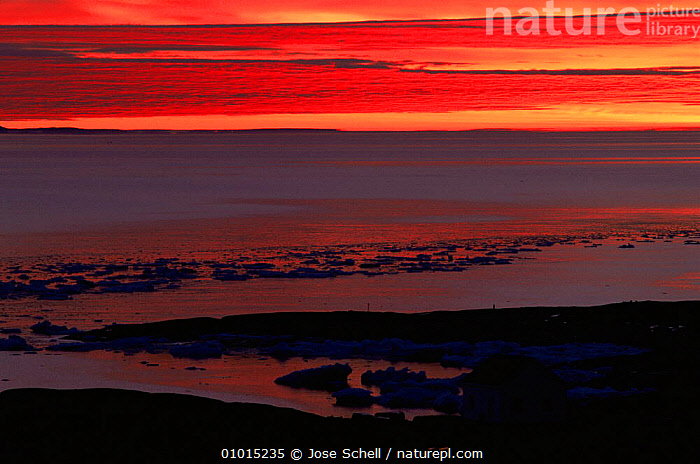 Sunset over ice filled ocean, St Mary's Islands, Newfoundland, Canada  ,  ATMOSPHERIC,COASTS,Frozen,ICE,LANDSCAPES,MARINE,NORTH AMERICA,OCEAN,sea,SKY,SUNSET,CANADA  ,  Jose Schell