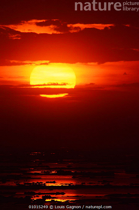 Sunset over the ocean, St Mary's Islands, Newfoundland, Canada, ATLANTIC,ATMOSPHERIC,DUSK,Evening,LANDSCAPES,MARINE,NORTH AMERICA,OCEAN,sea,SKY,SUN,SUNSET,VERTICAL, Louis Gagnon