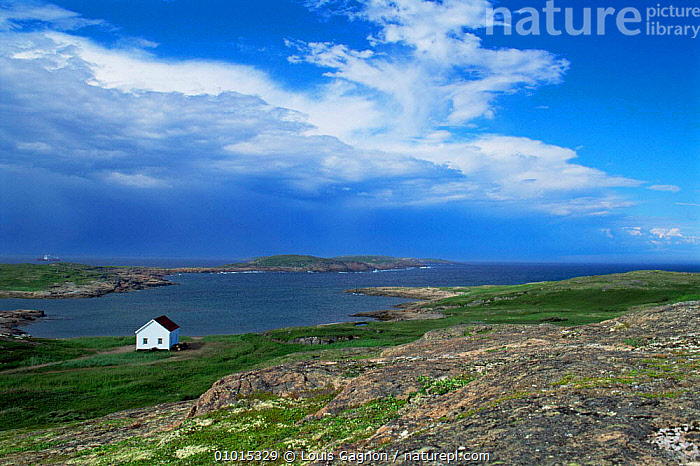 Solitary boathouse on the coast of St Mary Islands, Newfoundland, Canada, BUILDINGS,CANADA,coastal waters,COASTS,inlets,Islands,MARINE,NORTH AMERICA,sea , LANDSCAPES, Louis Gagnon