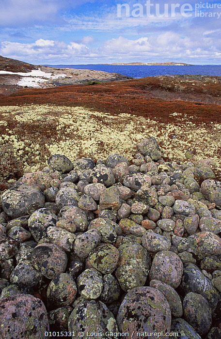 Glacial moraine on St. Mary Islands, Quebec, Canada.  ,  CANADA,COASTS,GLACIAL,GLACIAL FEATURES,LANDSCAPES,ROCKS,VERTICAL,North America,Geology  ,  Louis Gagnon